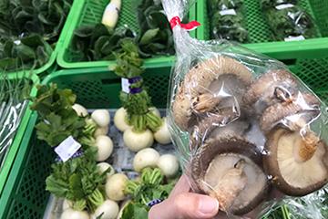 宇和島市三間 新鮮な野菜
