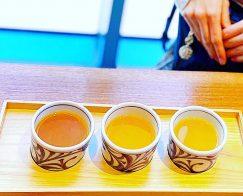 3種飲みくらべ
